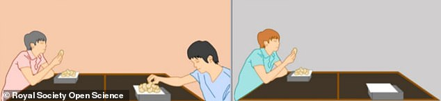 Paired subjects (left) sat at opposite corners of a table, each with their own plate of potato chips, while in the solo condition (right), a participant ate alone.Someone else on the other side of the table affected eating behaviour, even when it was clear they had their own portion to eat