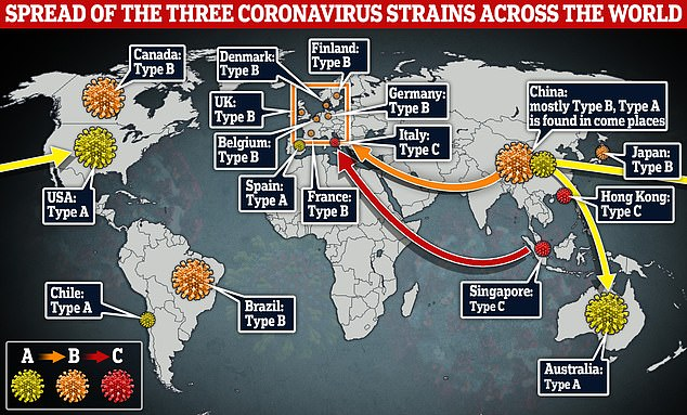 The map above shows how the three strains identified byCambridge University scientists traveled around the world