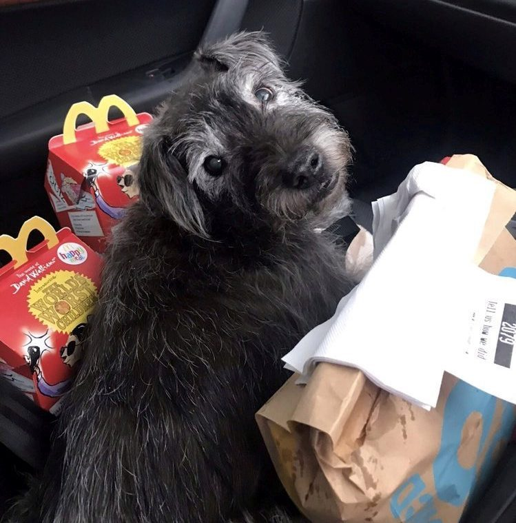 Titch has a chicken nugget Happy Meal plus a  cheeseburger — without the gherkin —  three times a week