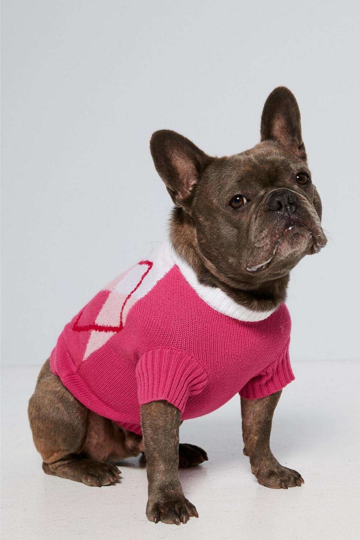 ...and get a matching one for your dog for just £10