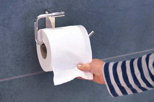 A child's hand grabbing some toilet paper.