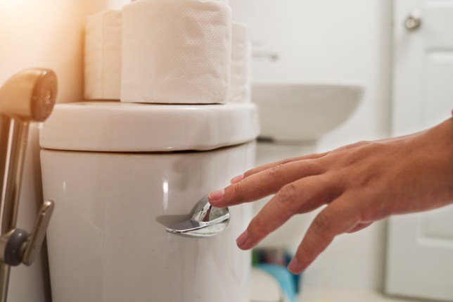 A cropped hand flushing the toilet.