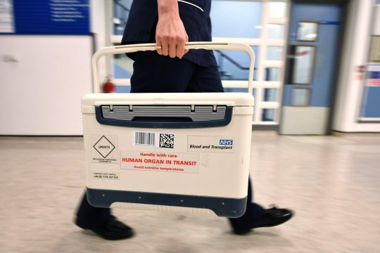 An NHS Blood and Transplant Small Human Organ in Transit box at St George's Hospital in Tooting, west London.