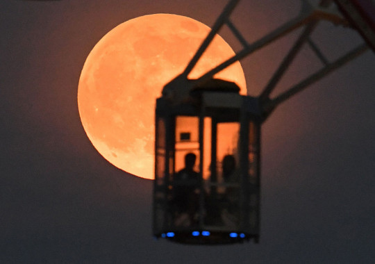 People riding a ferris wheel gaze at the Strawberry moon in Tokyo, Japan. (Photo by The Asahi Shimbun via Getty Images)