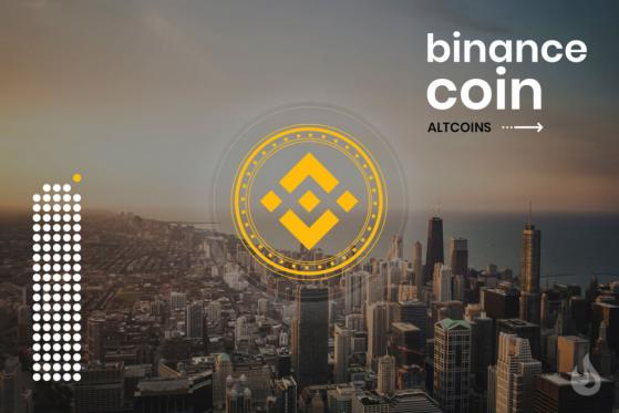 The Binance Coin (BNB) Explained