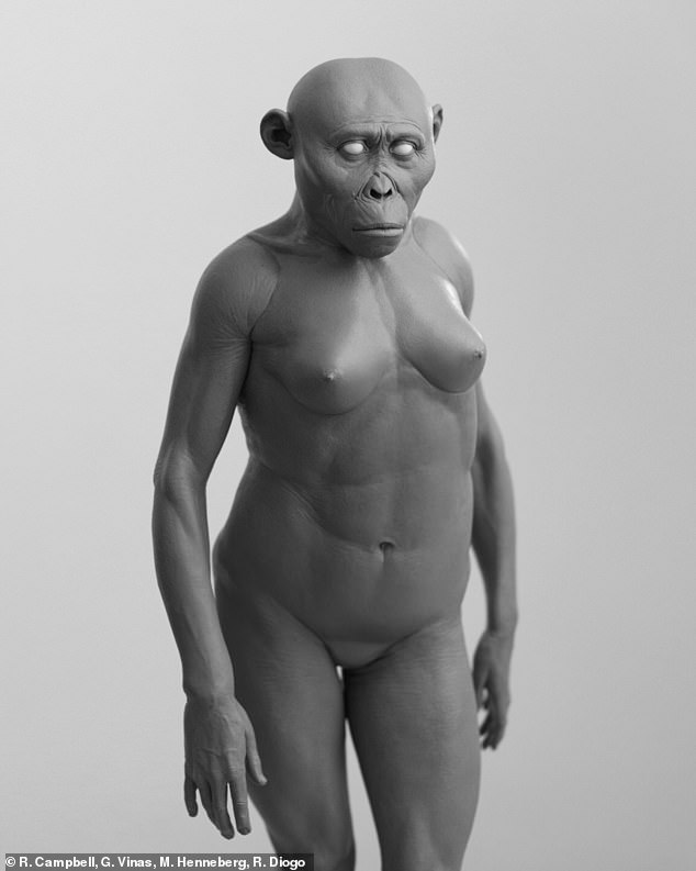 Pictured, a reconstruction of Lucy's soft tissues (without hair and pigment) produced in 2018