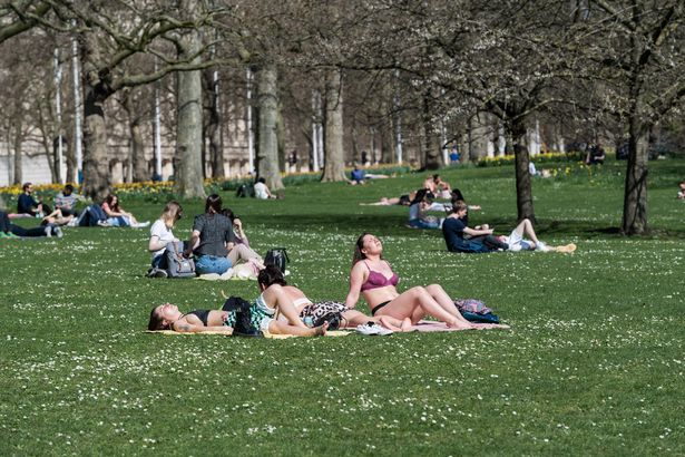 People sunbathe in the park