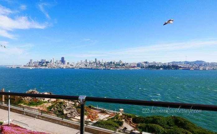 sights to see in san francisco bay alcatraz island beautiful views