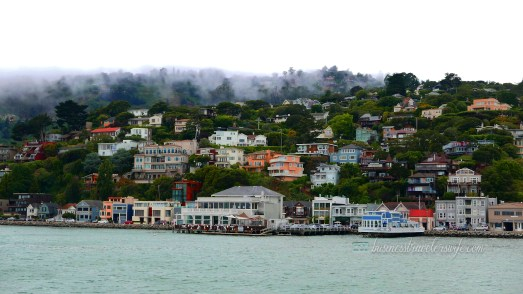 sights to see in san francisco sausalito view ferry Bay & Bridgeway
