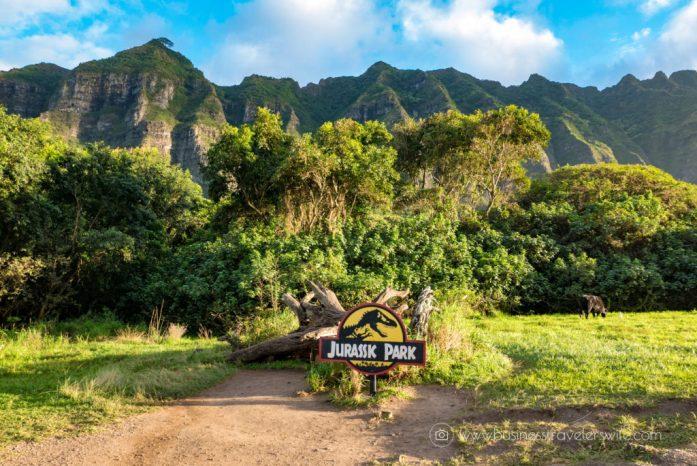 ATV Tour in Kualoa Ranch Oahu Jurassic Park Fallen Tree