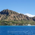 Snorkeling with Hawaiian Green Sea Turtles and Sailing in Honolulu Turtle Canyon Adventure Sail with Holokai Catamaran in Oahu Hawaii