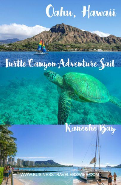 Snorkeling with Hawaiian Green Sea Turtles and Sailing in Honolulu Turtle Canyon Adventure Sail with Holokai Catamaran in Oahu Hawaii