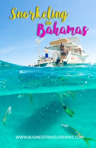 Amazing Snorkeling Tour with Stuart Cove's Dive Bahamas Boat Hollywood Bowl