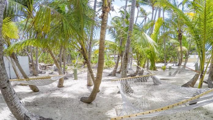VIP Beach Day and Dolphin Encounter on Blue Lagoon Island, Bahamas Exclusive Lounge Coconut Grove Hammocks