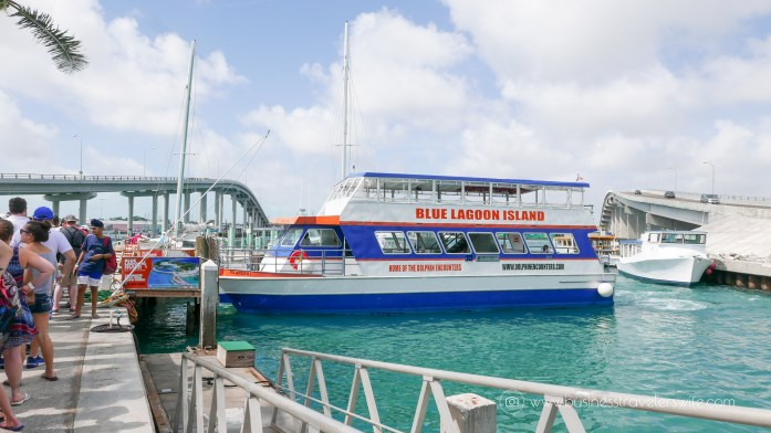 VIP Beach Day and Dolphin Encounter on Blue Lagoon Island, Bahamas Ferry Catamaran