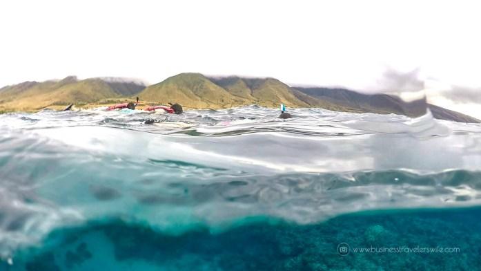 Kayak and Snorkel Tour in Maui, Hawaii with Maui Kayak Adventures