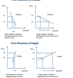 what is price elasticity  [ 1076 x 1234 Pixel ]