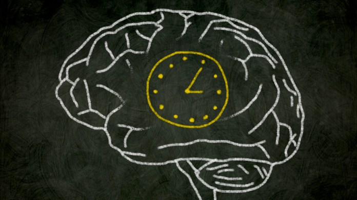 How Does Brain Perceives Time