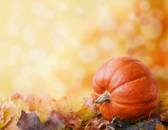 thanksgiving articles