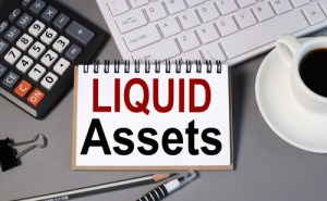 liquid net worth calculator