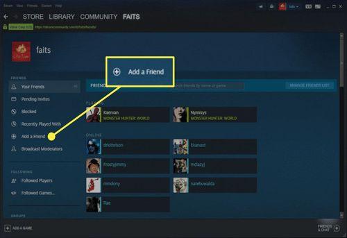 Add a friend in Steam