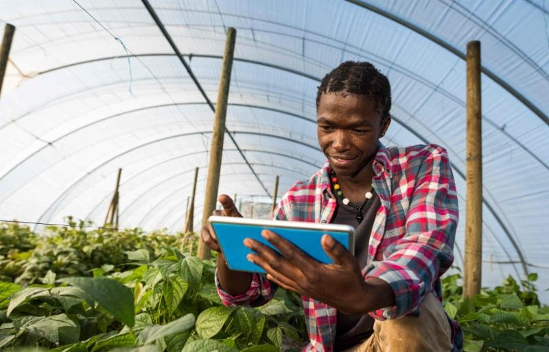 According to experts, the African population is expected to double by 2050, which means that food demand on the continent is expected to at least double by then.