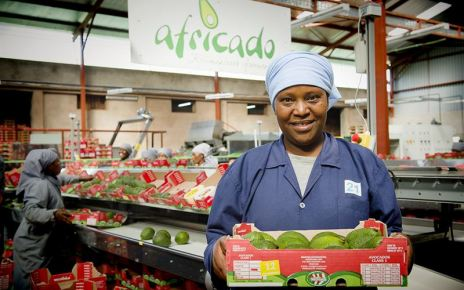 Africado was established in 2007 as Tanzania's first commercial and international grade producer of avocados.