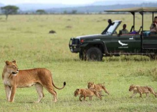 Sixty years ago, famous German wildlife conservationist and zoologist Professor Bernhard Grzimek and his son Michael proposed the formation of the Serengeti National Park and Ngorongoro Conservation Area, now the leading tourist magnets in East Africa.