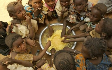 The United Nations World Food Programme (WFP) has warned that the COVID-19 pandemic could almost double the number of people suffering acute hunger, pushing it to more than a quarter of a billion by the end of 2020.