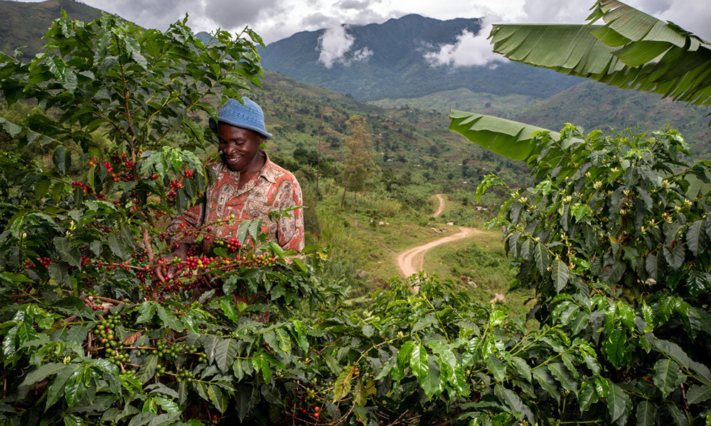 Launch of new Ugandan coffee marks second year of success for Nespresso's.