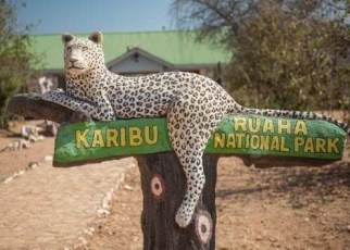Best for domestic, rural and regional tourism in East and Southern Africa, the World Bank-funded Resilient Natural Resource Management for Tourism and Growth project is under implementation in Tanzania.