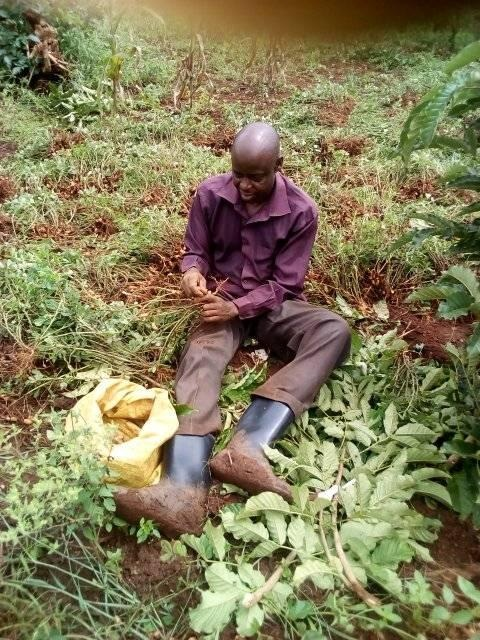Small-scale Farmers within East Africa have called upon EAC Member states to support them to adopt Organic farming practices.