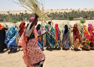 Sahel Alliance, G5 Sahel & its Partners Deliver Three Years Assessment.