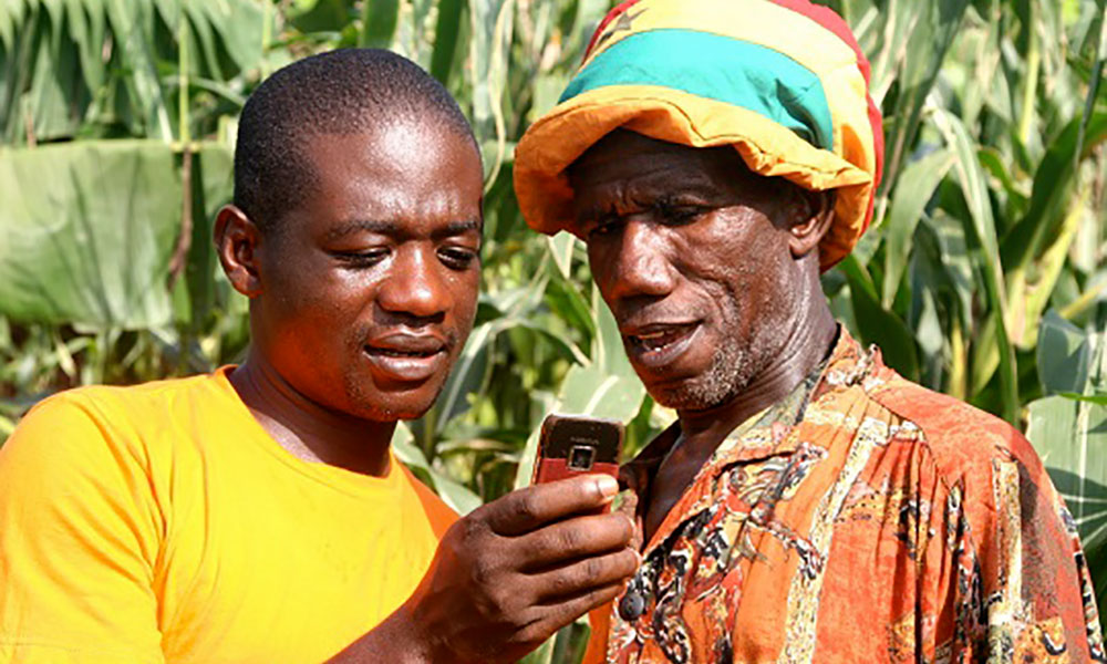 ICT the Solution for Youth in  Agriculture