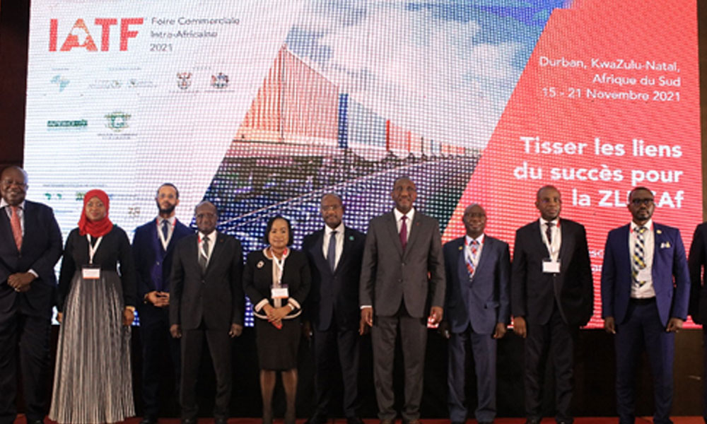 Diasporans urged to fully engage with Africa