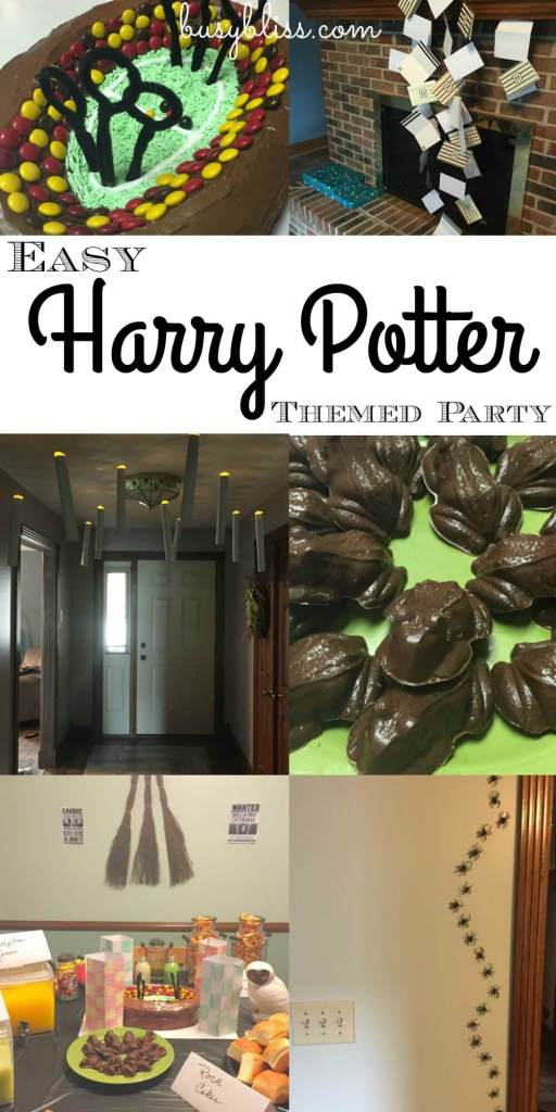 Harry Potter Party-pin