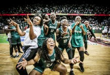 D'Tigress Celebrate 2019 Afrobasket Win