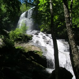 Kayak or Canoe Bear Creak w/Hike to Waterfalls
