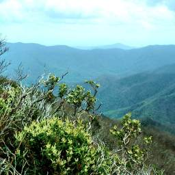 Cold Mountain Summit Hike