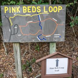 Pink Beds Loop Hike