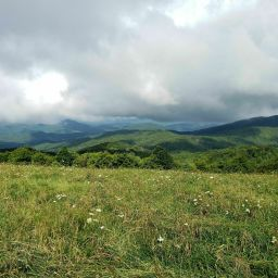 Max Patch Mountain & AT 5.1 Miles