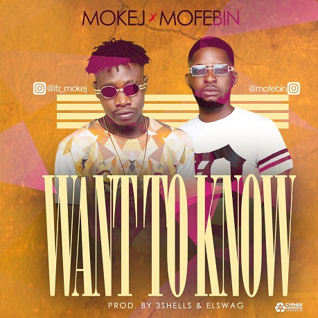 Mokej ft. Mofebin - Want To Know