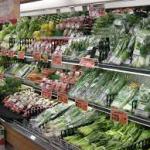 【警鐘】農薬・殺虫剤が発達障害の原因か?!・・・1粒の種から、栽培スタート!