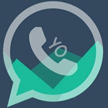 YOWhatsApp 8.92