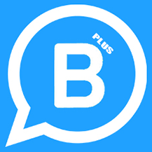 WhatsApp Business Plus v20.5.5
