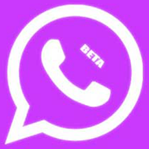 WhatsApp Base 2.21.15.15 With Privacy