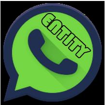 WhatsApp ENTITY 303
