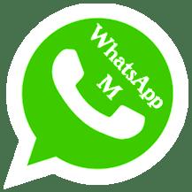 WhatsApp M Mod Mini 22.0