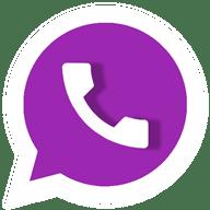 DM WhatsApp Pro 11.20