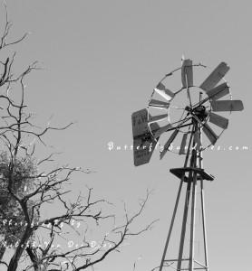 A long-forgotten windmill still provides inspiration...